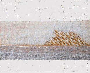 wandkleed PO achtergrond 320x260